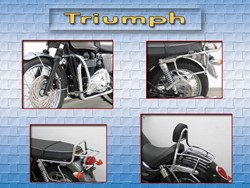 Picture for category Triumph
