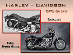 Picture for category Harley - Davidson