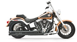 Picture of FREEDOM EG/ABE INDEPENDENCE LG 2 in 2 / SCHWARZ / SOFTAIL EG/ABE E3+E4