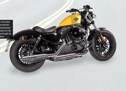 Picture for category XLH/Sportster
